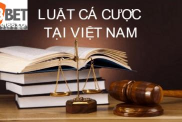 Cách hiểu đúng về luật cá độ tại Việt Nam là gì