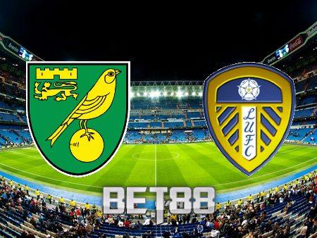 Soi kèo nhà cái Norwich City vs Leeds Utd – 21h00 – 31/10/2021