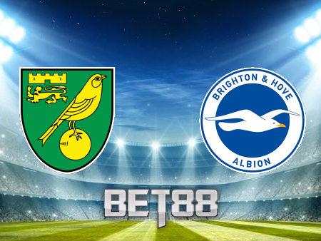 Soi kèo nhà cái Norwich vs Brighton Albion – 21h00 – 16/10/2021